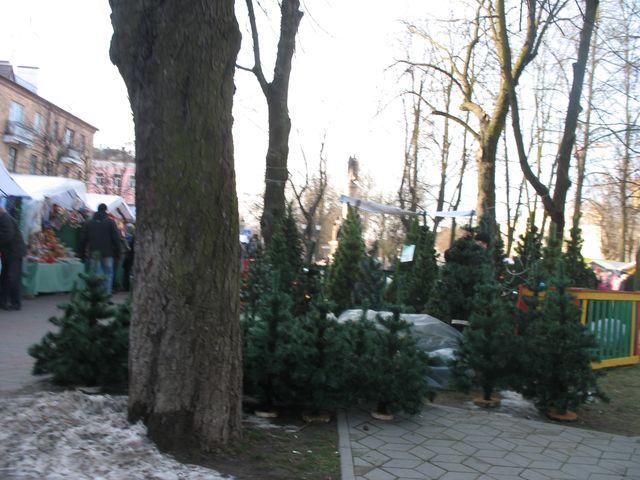 Ангел на Новогодней ярмарке в Бресте (фото)