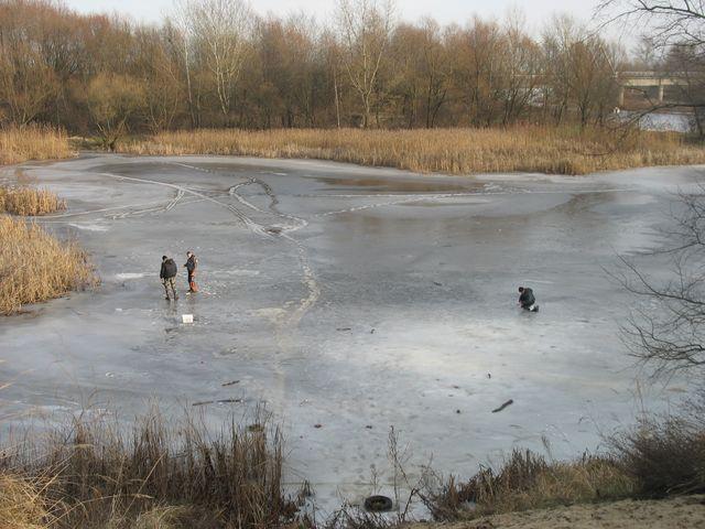 Любители зимней рыбалки не смотря на тепло продолжают ловить рыбу (фото)