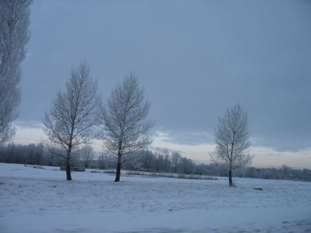 Последний день 2009 года (фото)