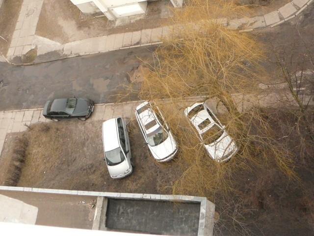 Первые фото для акции Наш двор - ул. Кирова 50