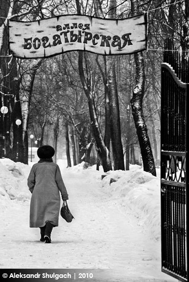 Зимний парк культуры и отдыха (фото)