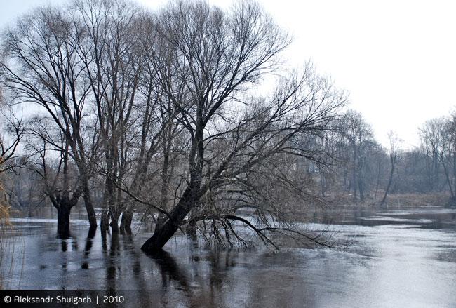 Разлив в Брестской крепости (фото)