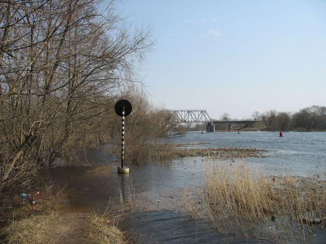 Разлив реки Мухавец - около Суворовского моста