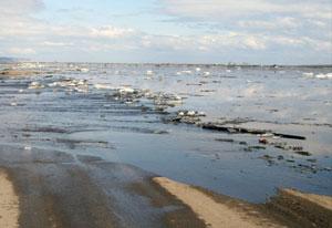 Число подтопленных подворий в Брестской области существенно уменьшилось