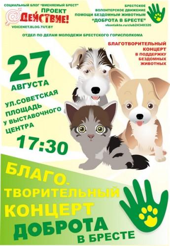 Акция в поддержку бездомных животных прошла в Бресте