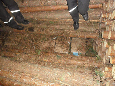 7 тысяч пачек сигарет пограничники нашли... в дровах