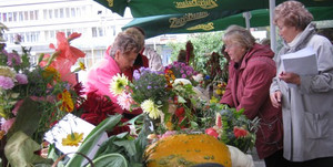 День пожилых людей в Бресте