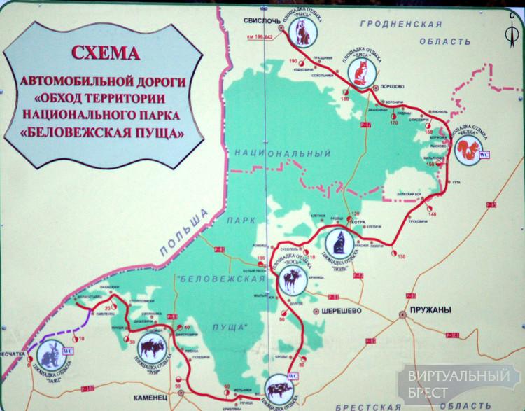Из Бреста в Гродно и обратно - через Беловежскую пущу