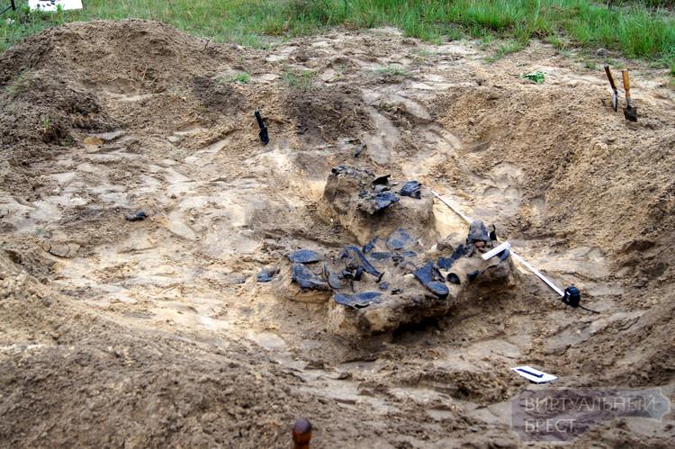 В Гершонах начаты раскопки массового захоронения евреев