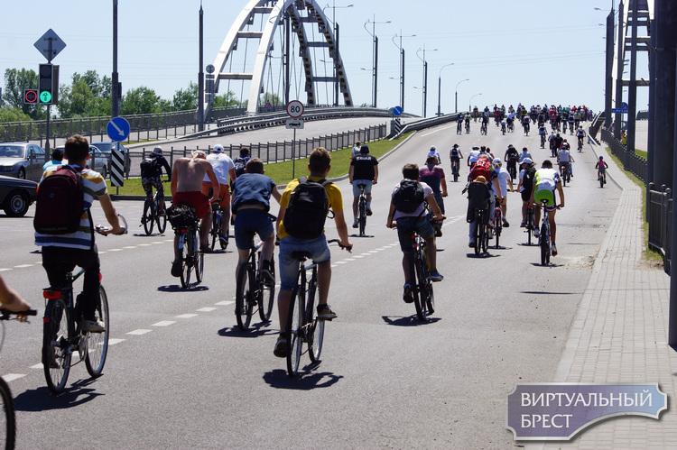 Концепция велосипедного движения Бреста может появиться уже в этом году