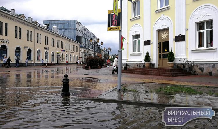 Декадная норма осадков выпала в Бресте 21 мая