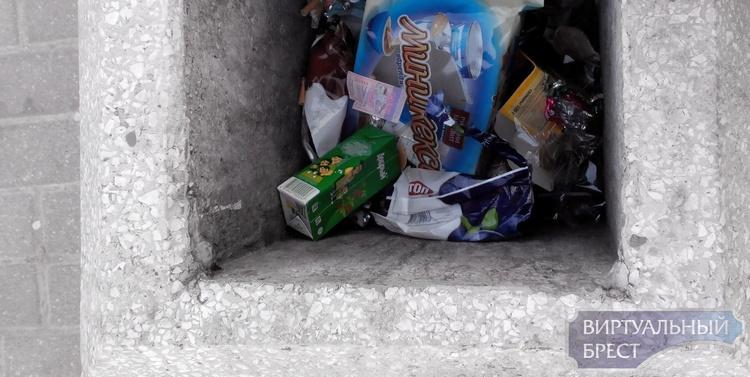 Брестчанин покупает талончики и... выбрасывает их в мусорку