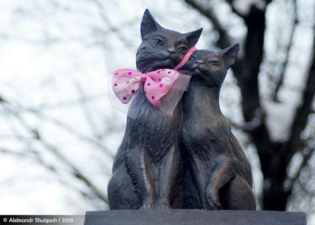 Фото-шутка: котики с розовой бабочкой