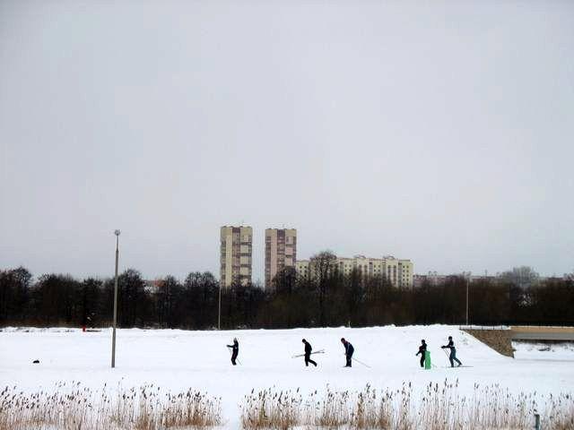 В Бресте прошла Лыжня-2010 (фото)